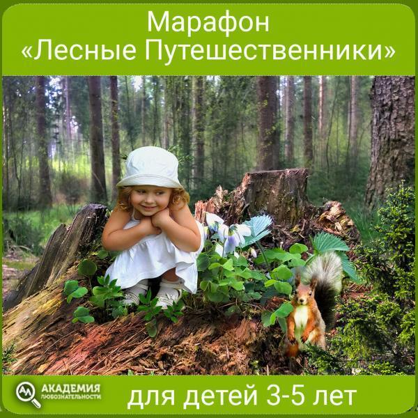 Марафон Лесные путешественники