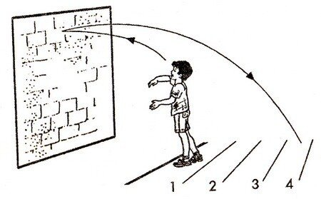 Игра Зебра для детей