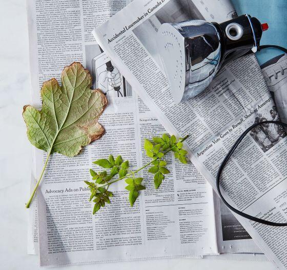 сушка листьев утюгом