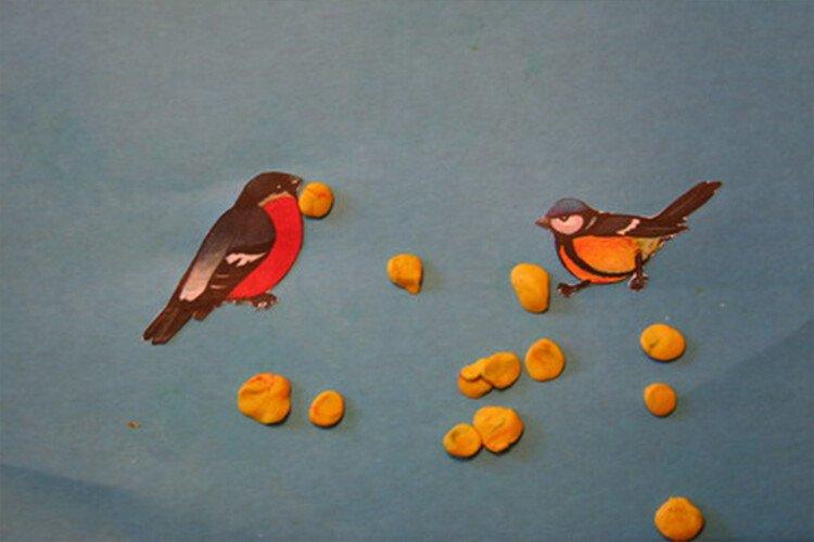 Кормим птичек пластилином