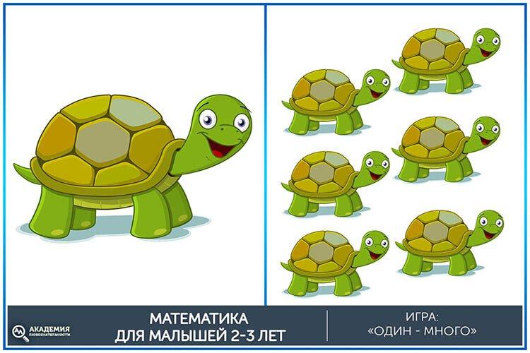 Математическая игра один-много Черепахи