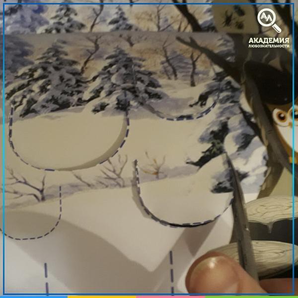 Фотография 1 к игре Кто, где зимует