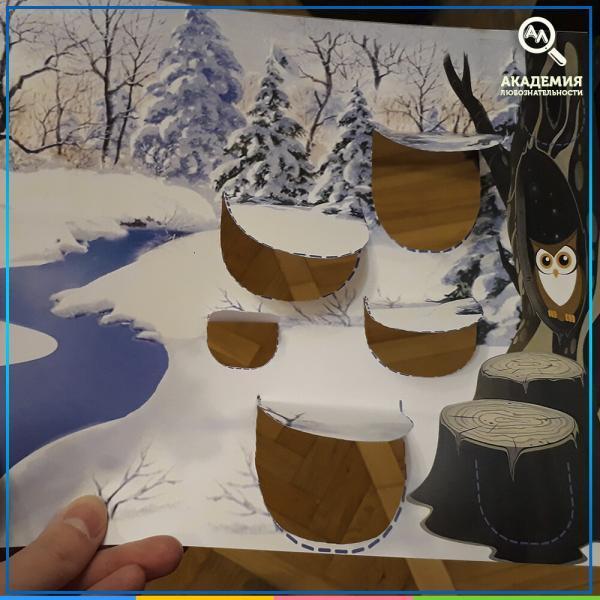 Фотография 2 к игре Кто, где зимует