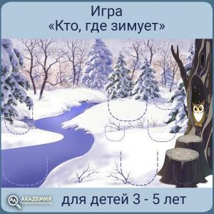 Игра Кто где зимует