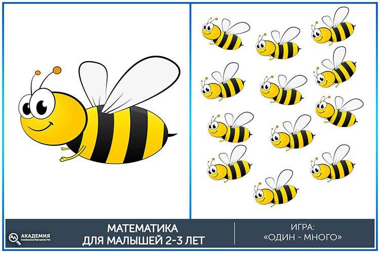 Математическая игра один-много Пчелы