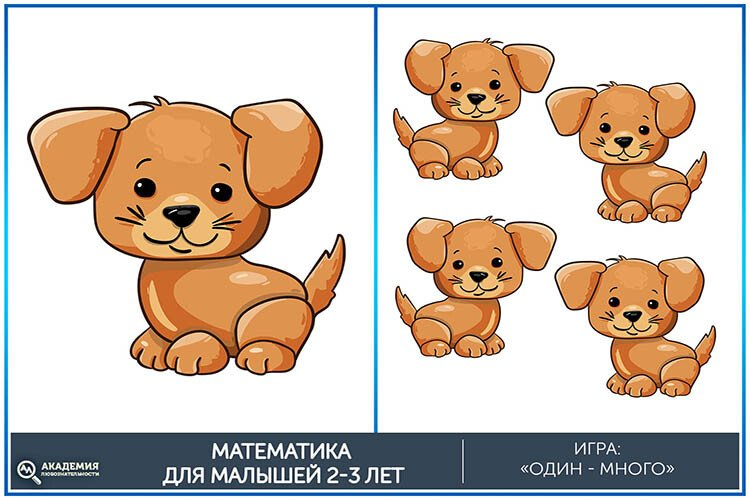 Математическая игра один-много Собачки