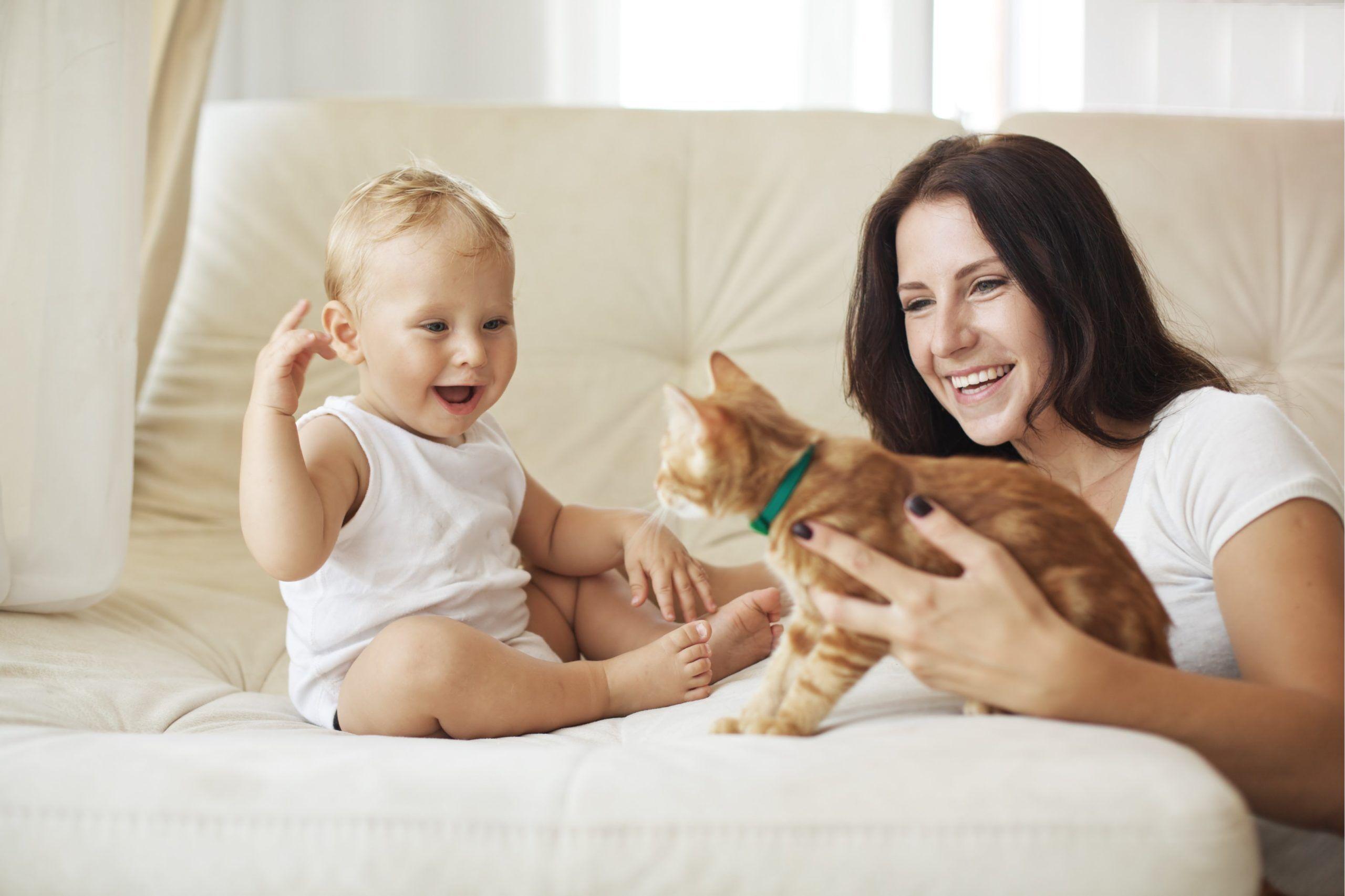 Формирование речи у ребёнка 1-2 лет