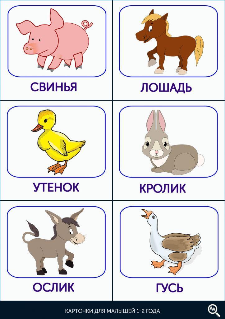 Карточки для работы с детьми 1-2 года