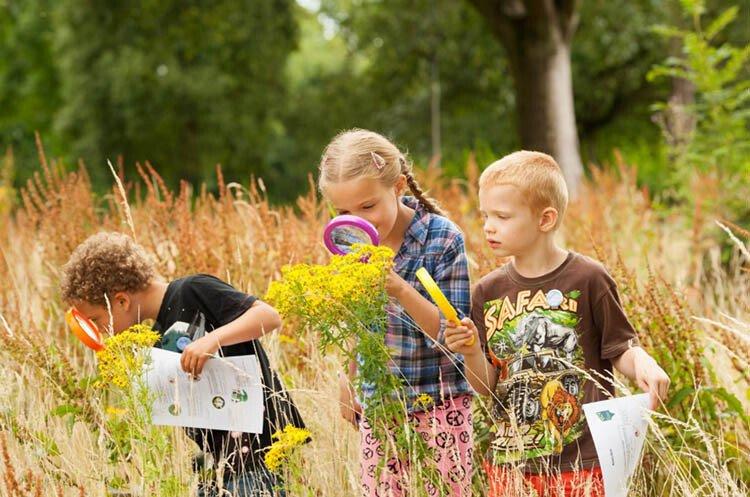 Квесты для детей 4-7 лет на даче, в деревне, на природе